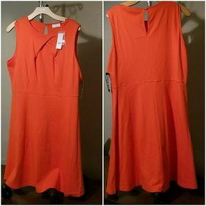 NWT Orange Flare Dress
